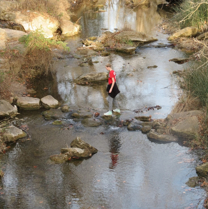 girl staring on a rock in middle of stream - find your park